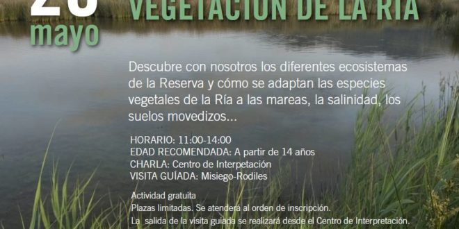Taller de flora y vegetación de la Ría