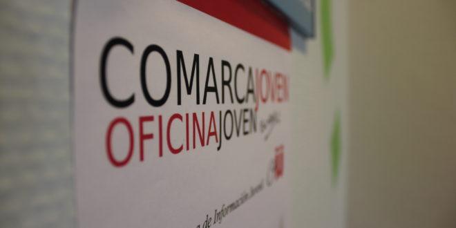 Situación actual y demandas de los Servicios de la Información Juvenil en España