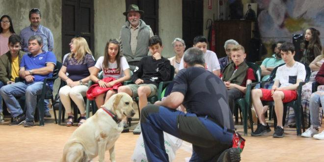 Educación y habilidades caninas en El Llagar. «La película»