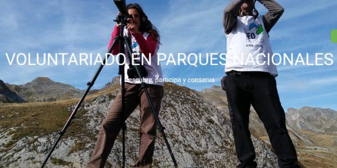 Programa de Voluntariado en Parques Nacionales 2019: SEOBirdLife