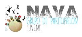 El Grupo de participación de Nava, también comienza