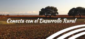 Emprender y desarrollar su vida en el medio rural.