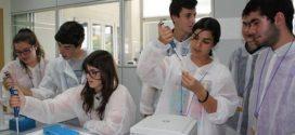 Programa Campus científicos de verano