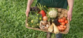 Subvenciones para el fomento de la comercialización de alimentos ecológicos en el Principado de Asturias en 2020.