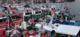 Ayudas iniciales a jóvenes pescadores y para inversiones en buques pesqueros