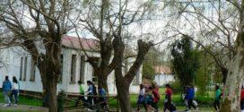"""Becas para participar en el Programa """"Aulas de la Naturaleza"""""""